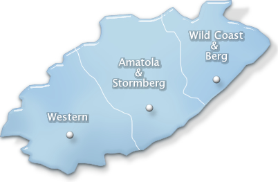conference venues in eastern cape
